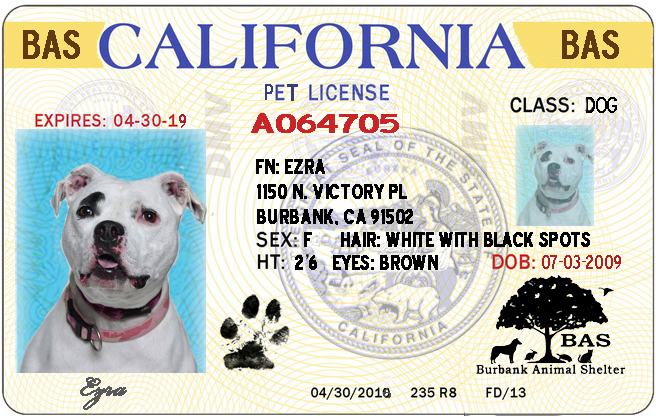 Ca Police Shelter Design - Department Burbank Animal Fees